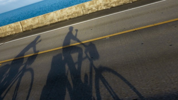 shadows of bicycles on the road