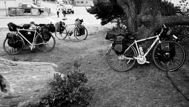 Three fully loaded touring bicycles leaning against a tree, a bench, and standing.