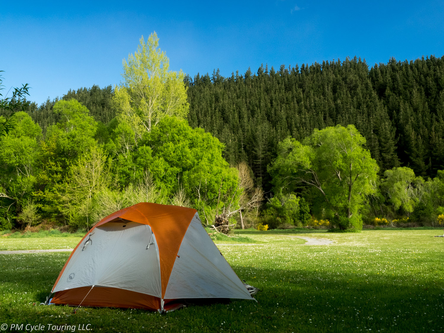 a tent set up in a field with a forest surrounding it