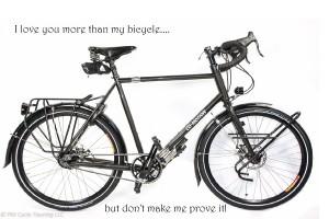 co-motion bicycle